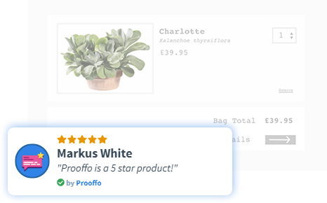 Prooffo notification for review of the product