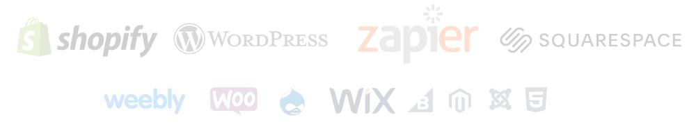 Major Website Platforms